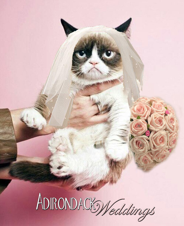 Adirondack Weddings Grumpy Cat