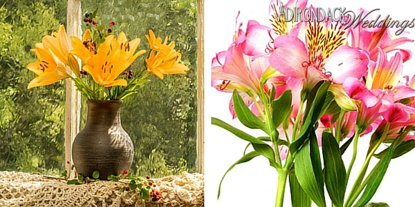 Daylilies | Adirondack Weddings Magazine