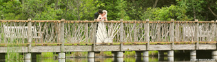 A rustic Adirondack bridge