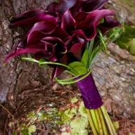 Adirondack Weddings magazine | Image by Ann Marie Somma